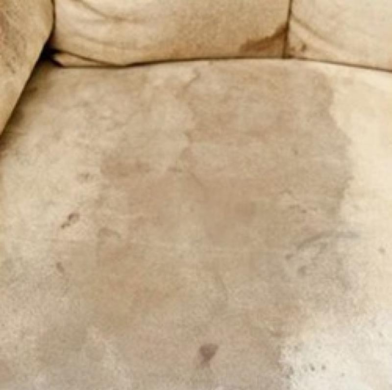 mit diesem grandiosen trick kannst du f r 8 90 deine komplette couch reinigen. Black Bedroom Furniture Sets. Home Design Ideas