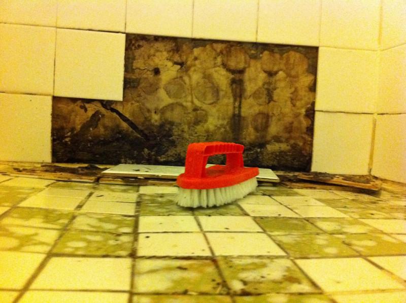 nie wieder schlierige fenster und welke blumen diese tricks sind absolut keine schnapsidee im. Black Bedroom Furniture Sets. Home Design Ideas